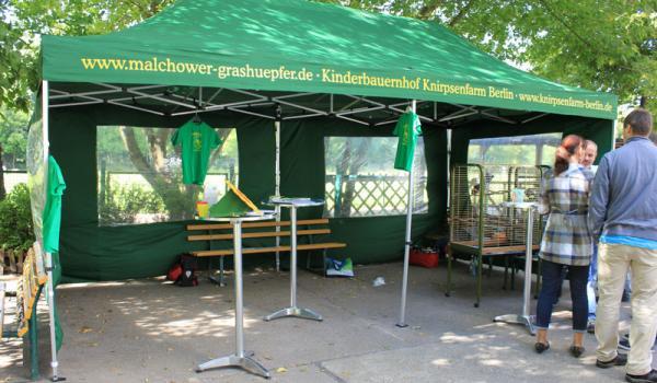 Malchower Grashüpfer e.V. - Vereinsarbeit zur Einschulung
